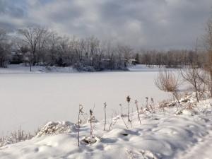 Un paisaje invernal nevado