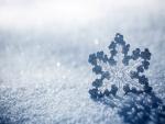 Copo de nieve helado sobre la nieve