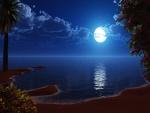 La luna iluminando la playa