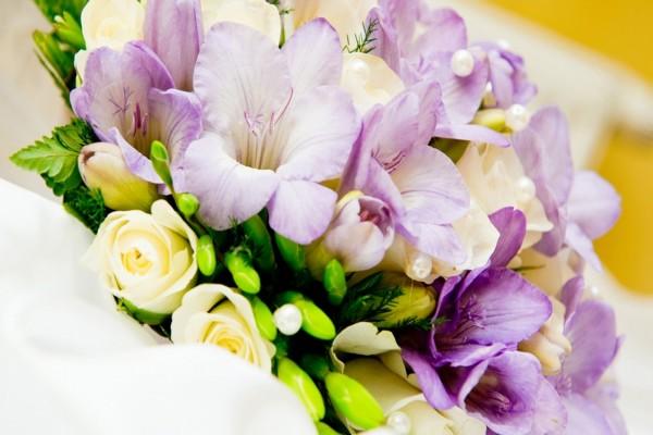 Bellas flores blancas y lilas
