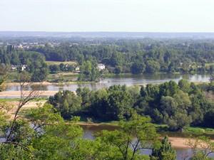 Confluencia de los ríos Loira y Vienne (Francia)
