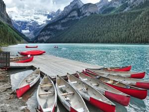 Postal: Canoas en el puerto deportivo del lago