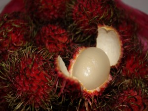 Frutos de rambután