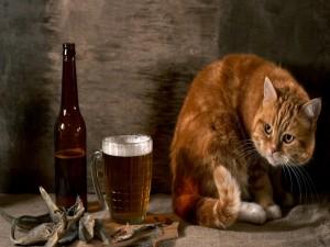 Postal: Banquete para el gato