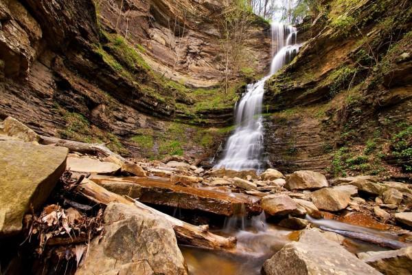 Cascada entre árboles y rocas