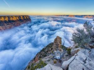 Postal: Gran Cañón de Arizona entre nubes