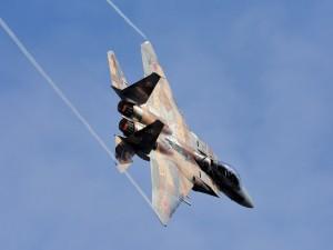 Postal: Mitsubishi F-15DJ