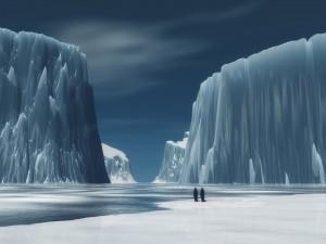 Pingüinos en su hábitat helado