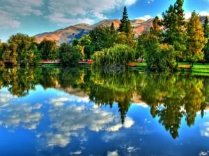 Postal: Árboles y cielo reflejados en el lago