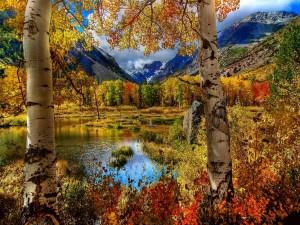 Los colores de la naturaleza en otoño