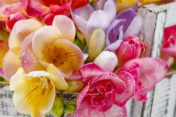 Colorido ramo con pequeñas flores
