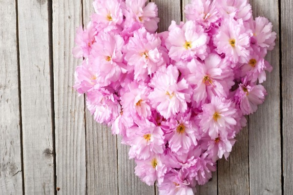 Corazón con flores rosas