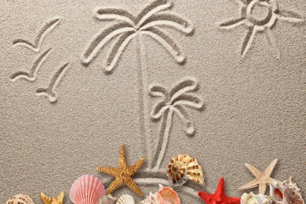 Elementos marinos sobre la arena