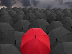 Postal: Un paraguas rojo entre negros