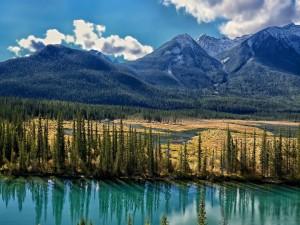 Montañas, árboles y río en Alberta (Canadá)