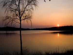 Postal: Últimos rayos de sol sobre el lago