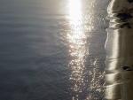 Brillos en la orilla