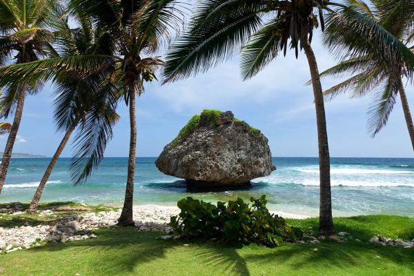 Interesante paisaje en una zona tropical