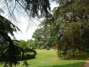 Árboles y jardín en el castillo de Laas ( Francia)