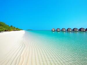 Postal: Playa de arena blanca y agua cristalina