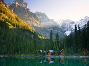 Cabañas de madera junto al lago y un frondoso bosque