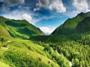 Postal: Río que corre entre árboles y montañas