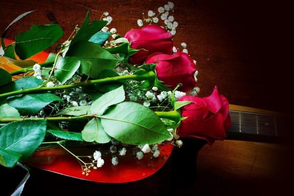Tres delicadas rosas rojas sobre la guitarra