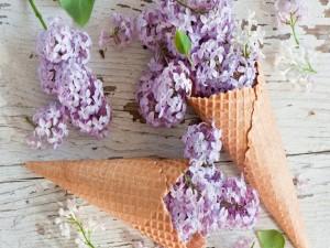 Postal: Lilas y conos de helado
