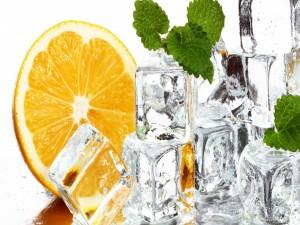 Rodaja de naranja, cubitos de hielo y menta