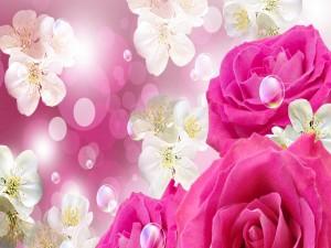 Postal: Flores rosas, blancas y burbujas