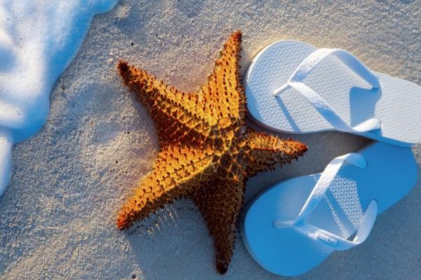 Estrella de mar y ojotas sobre la arena