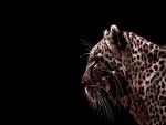 Perfil de un leopardo