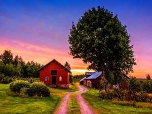 Postal: Casas junto al camino
