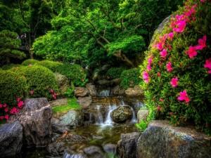 Verde vegetación junto a una cascada