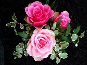 Postal: Ramo con rosas y hojas