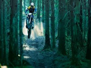 Motocross entre los árboles