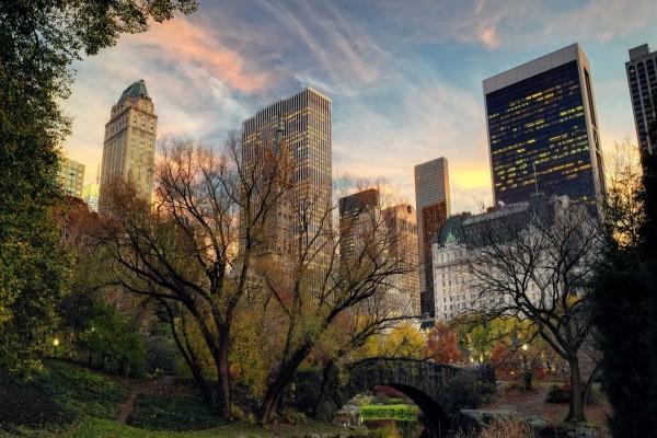 Edificios de Nueva York vistos desde el parque