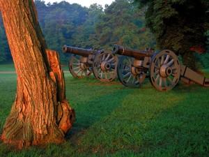 Postal: Dos cañones en la hierba