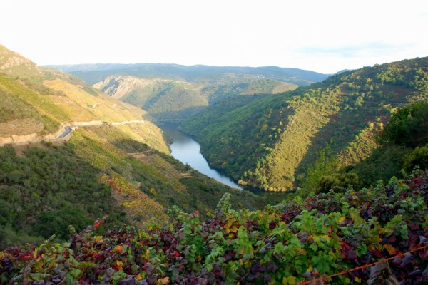 El río Sil en Galicia