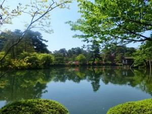 Un pequeño lago rodeado de árboles