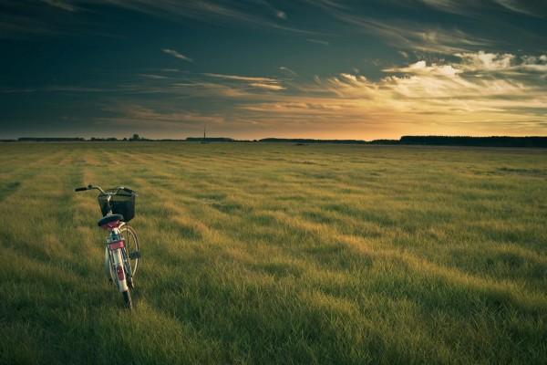 Una bicicleta sobre la hierba