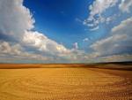 Cielo azul y blancas nubes sobre el campo