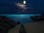 La luna llena ilumina el mar