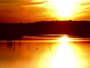 Fuerte reflejo del sol en el lago
