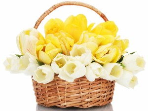 Postal: Preciosas flores en la cesta de mimbre