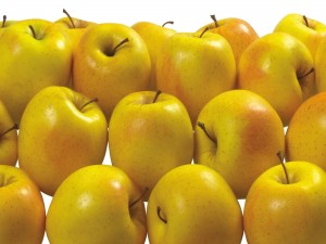 Postal: Dulces manzanas amarillas