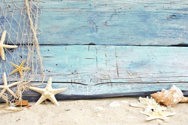 Estrellas de mar en la arena