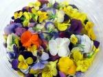 Cuenco con flores de colores comestibles