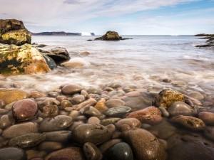 Costa de Newfoundland (Isla de Terranova)