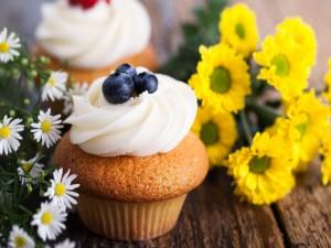 Cupcakes con crema de queso y arándanos